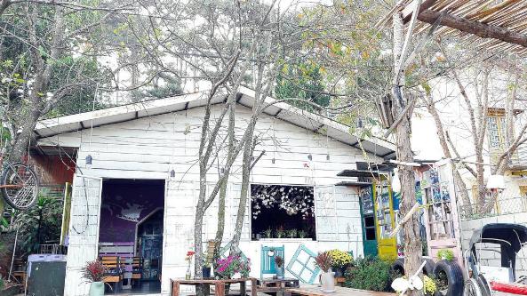 cam-nang-quan-cafe-dep-tai-da-lat-32