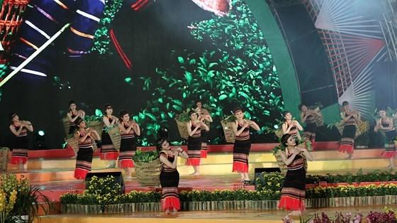dem-khai-mac-festival-hoa-day-mau-sac-tai-da-lat-5